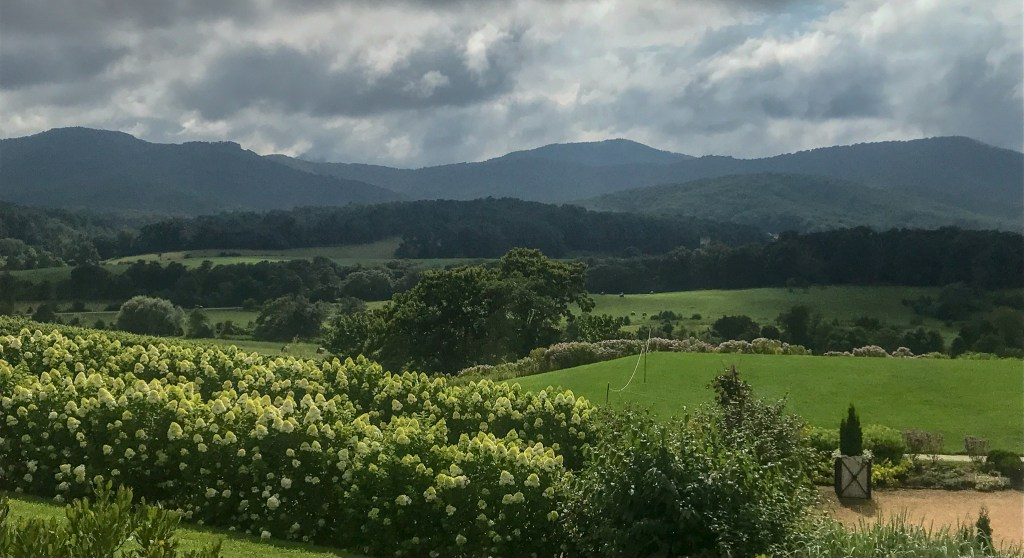 Stunning views at Pippin Hill Farm along the Monticello Wine Trail