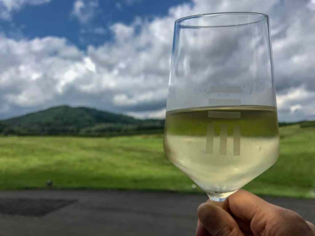 Enjoying Early Mountain Vineyard on the Monticello Wine Trail