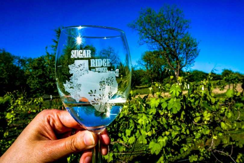 A hand holding a glass with Sugar Ridge Winery etched in with a vineyard in the backdrop.