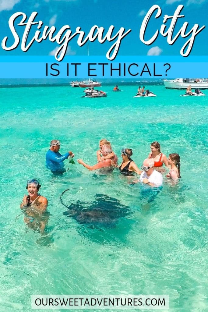 "a group of people standing in shallow water with stingrays swimming nearby. There are also more people and boats in the background. With text overlay ""Stingray City is it ethical?"""