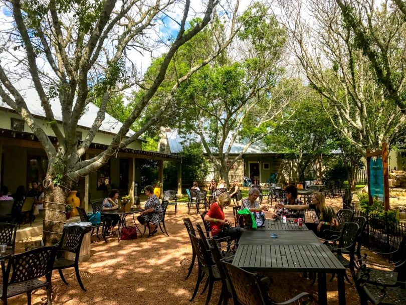 An outdoor patio with people sitting around tables under the shade from trees at one of the best wineries in Fredericksburg, Fiesta winery.