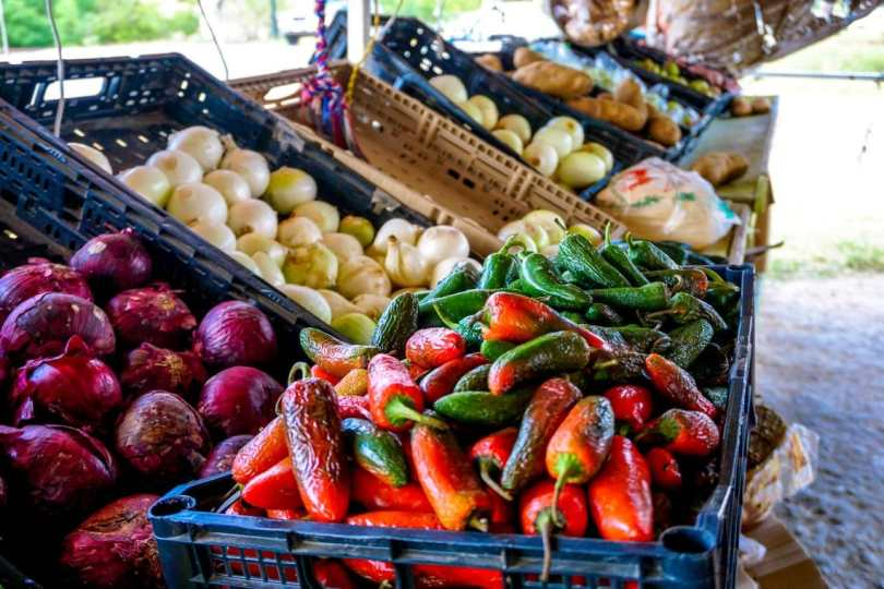 Fresh chile peppers, red onion, yellow onion, and more in crates at the Brownsville Farmers Market