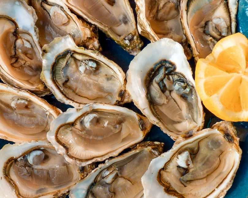 Several fresh oysters on the half shell with a slice of lemon. The perfect time to indulge in this delicacy is September through December.