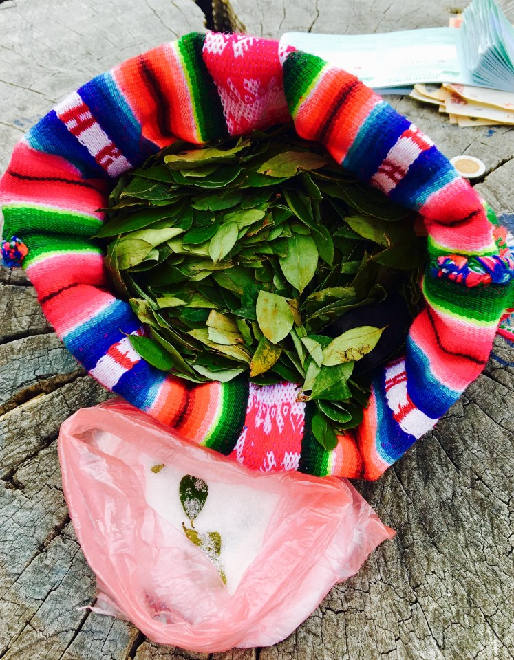 Coca leaves are commonly chewed or stewed in hot water to prevent altitude sickness
