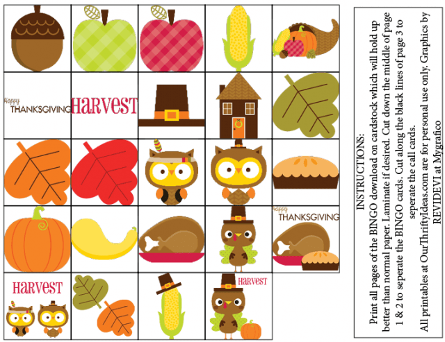 image about Thanksgiving Bingo Printable named Thanksgiving BINGO free of charge Printable Video game - Our Thrifty Plans