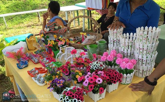 sirao-flower-garden-cebu-philippines-our-travel-dates-image8
