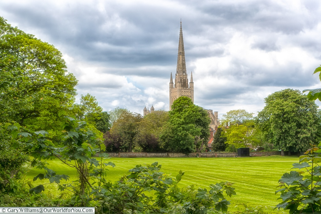 A view of Norwich Cathedral, Norfolk, England, Great Britain