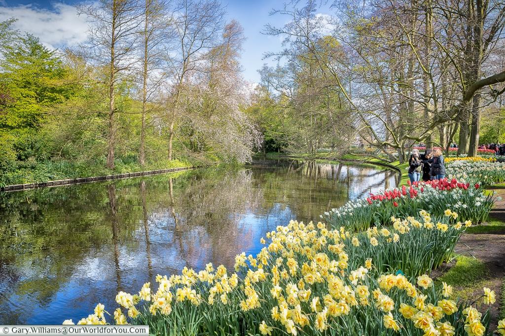 Waterside blooms, Keukenhof, Holland, Netherlands