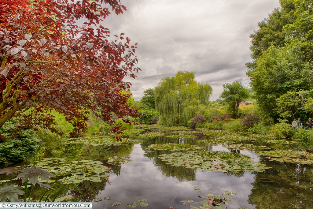 The Lily ponds at Giverny, Normandy, France