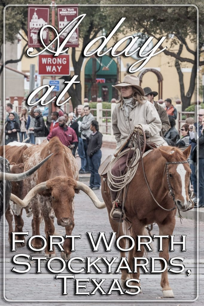 A day at Fort Worth Stockyards, Texas -Pinterest