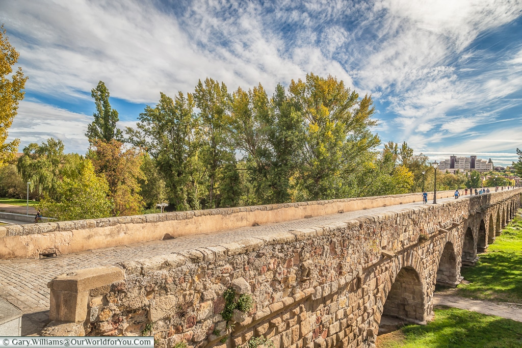 The Roman Bridge, Salamanca, Spain