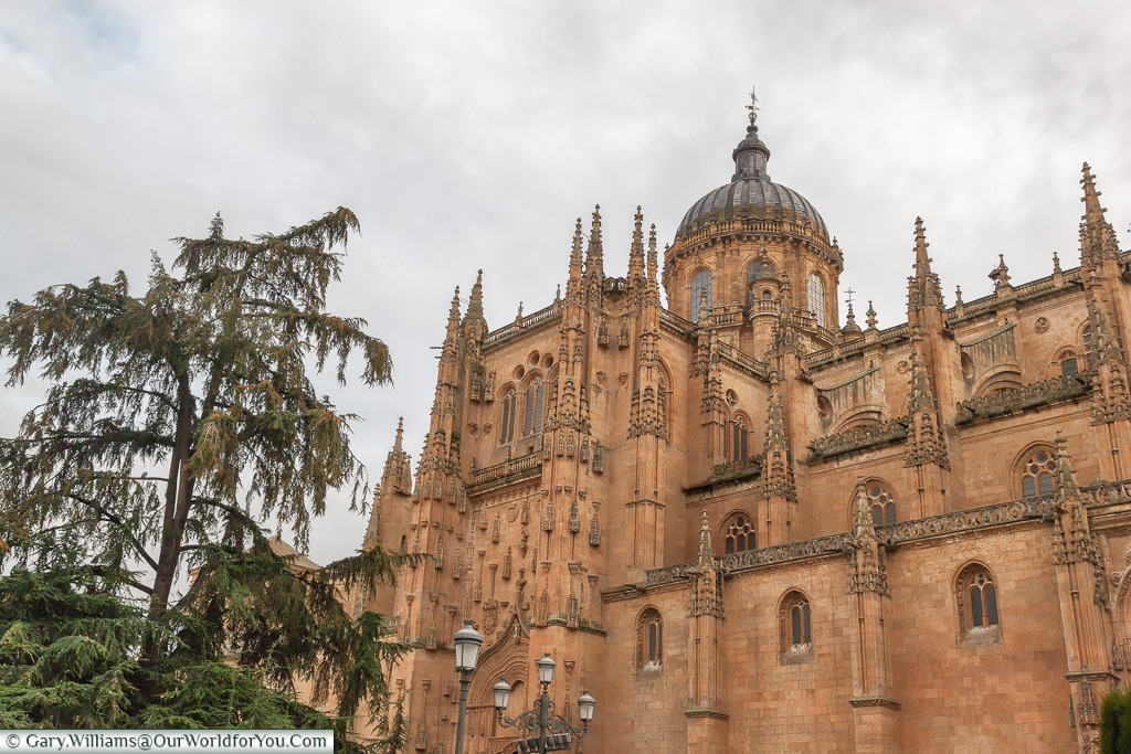 The old Cathedral from the north, Salamanca, Spain