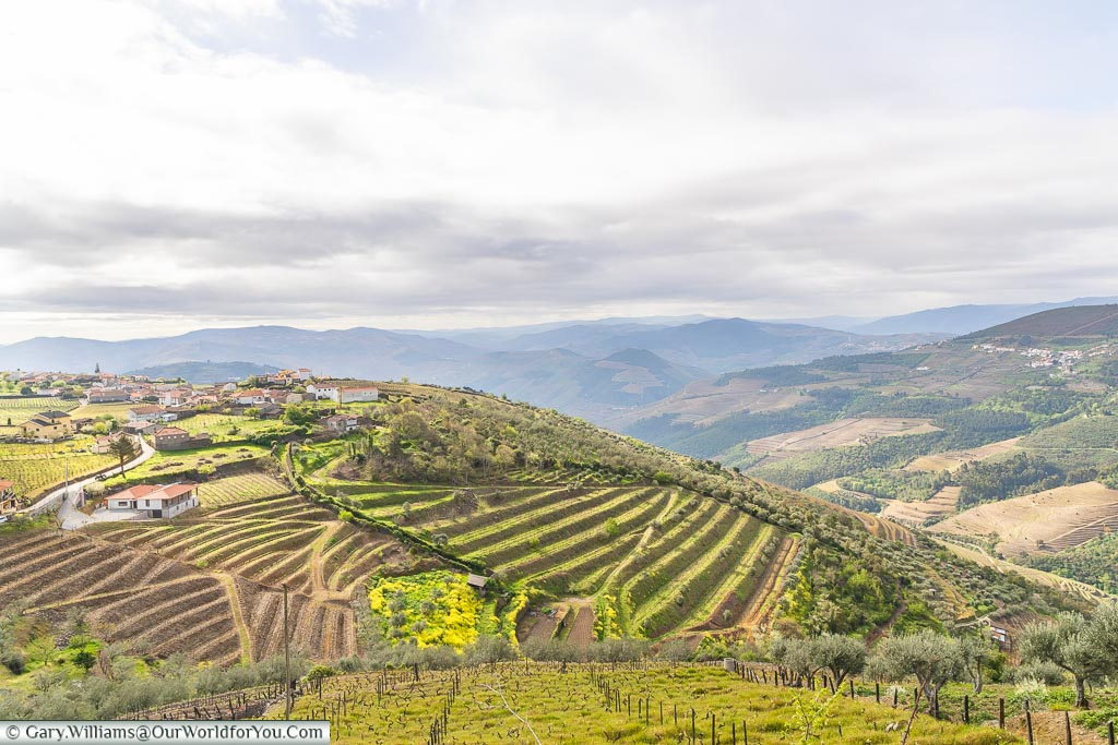 High up in the valley, Douro Valley, Portugal