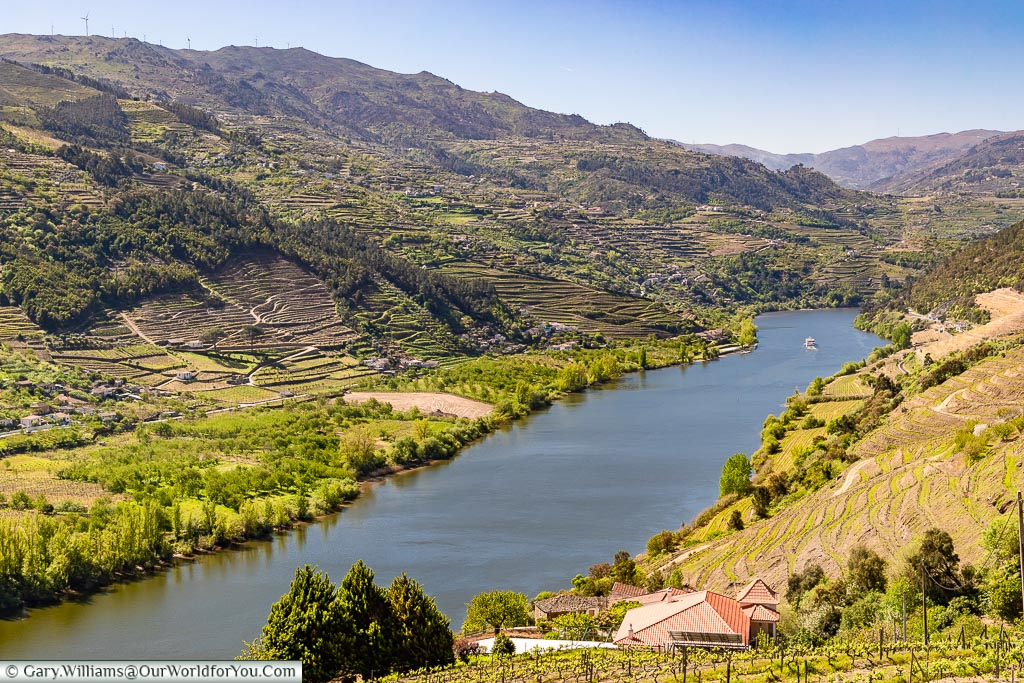 Looking along the Douro Valley outside Gafaria, Portugal