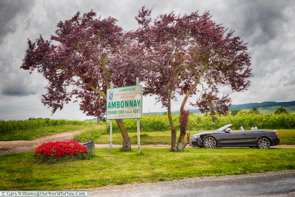 A roadside stop at Ambonnay, Champagne, France