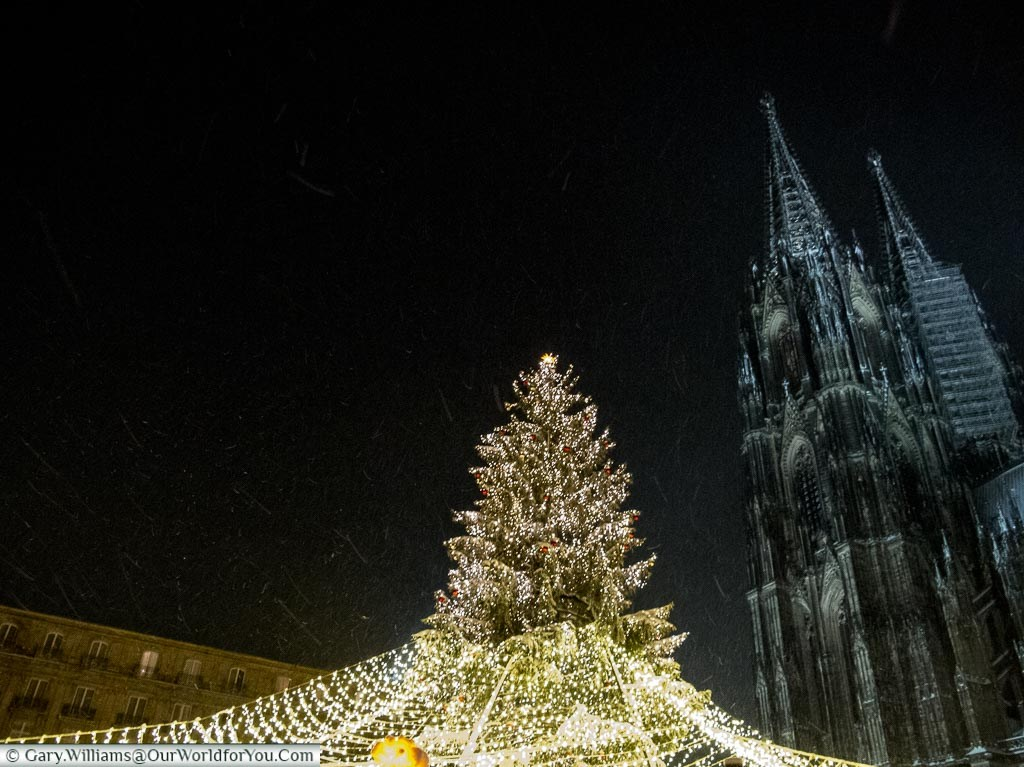 The Dom and the Christmas tree, Cologne, Germany
