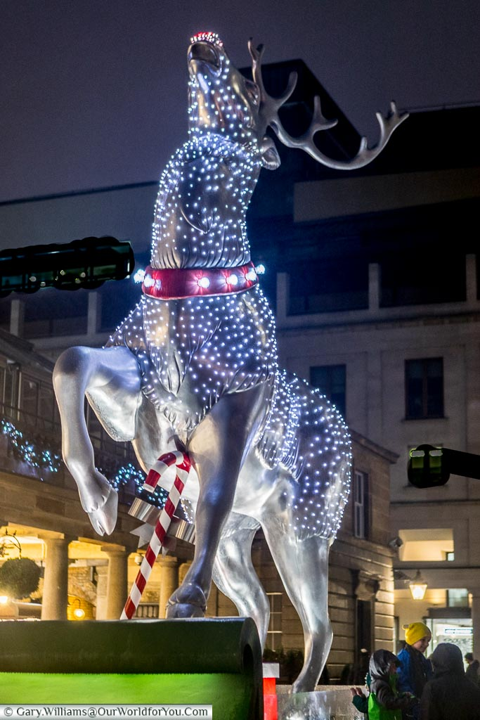 The Reindeer at Covent Garden, Christmas, London, England, UK