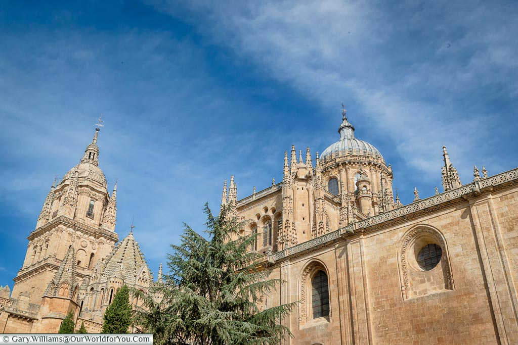 A view of the Catherdals from the south, Salamanca, Spain