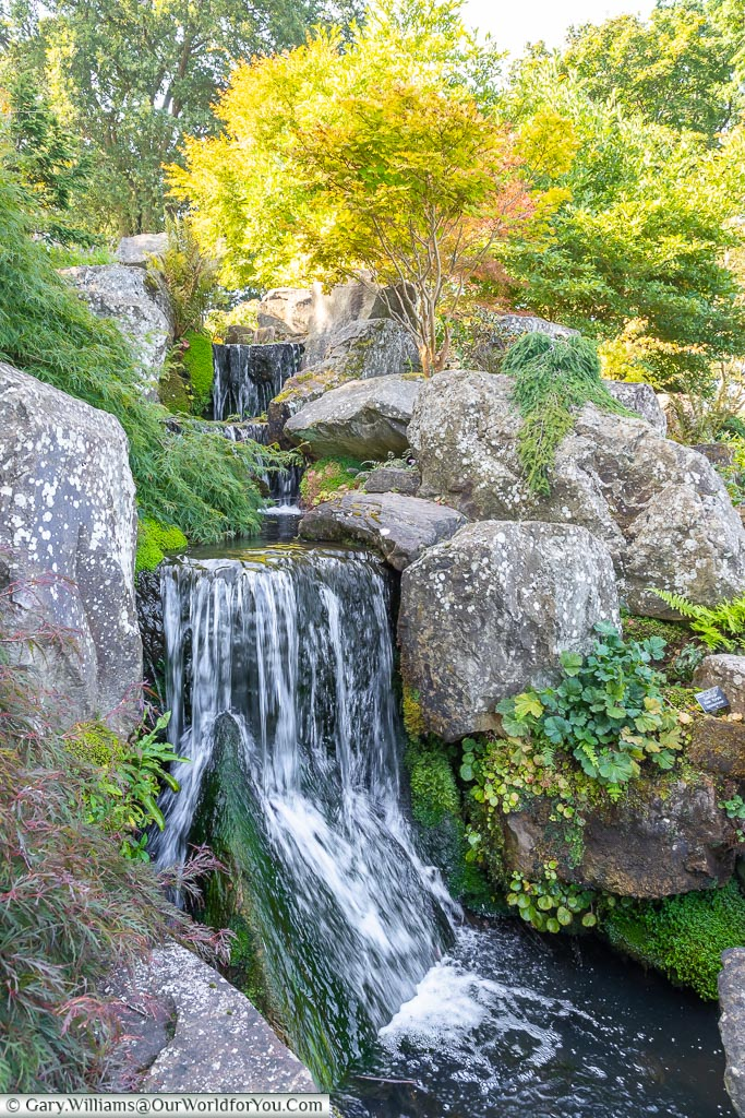 A stream leading to a waterfall within the Rock Garden.
