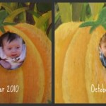 Wordless Wednesday: What a difference a year makes