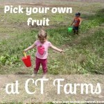 Pick Your Own Fruit Season at Connecticut Farms