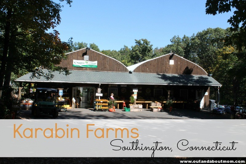 Karabin Farms_Out and About Mom_Header