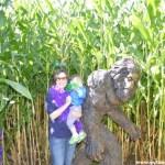 An A-Maze-ing Adventure at Garden's Dream Farm in Enfield