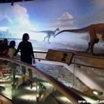 OAAM ON BETTER CONNECTICUT: Dinosaur State Park