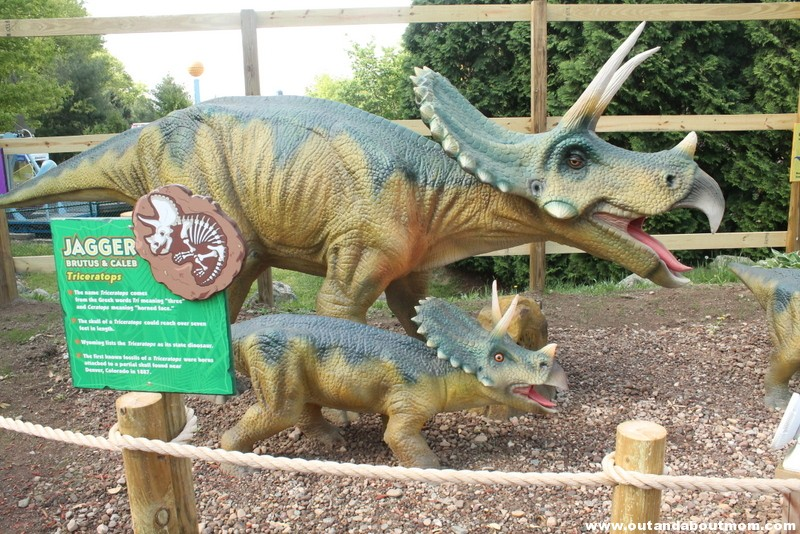 Lake Compounce_#Dinoexpedition_#lakecompounce_out and about mom_things to do with kids in connecticut (28)