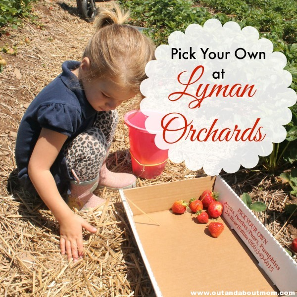 Lyman Orchards_Pick Your Own Calendar_Out and About Mom_Cover Image