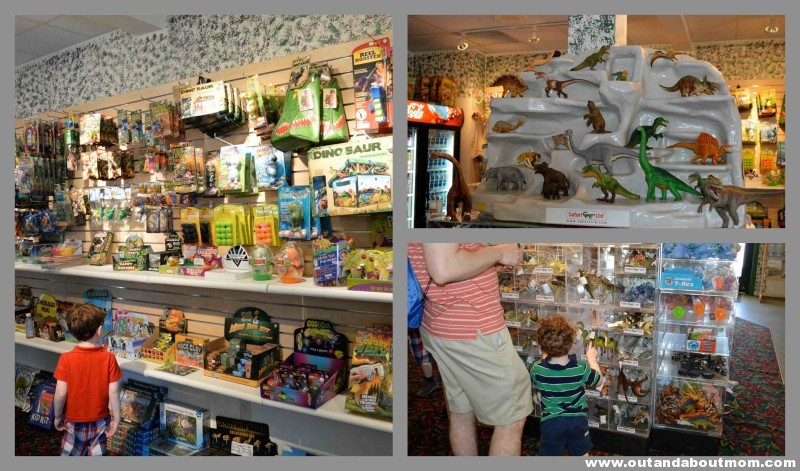 The Dinosaur Place Gift Shop 1