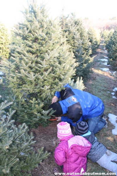 Coward's Farm_Out and About Mom_Christmas Tree (13)