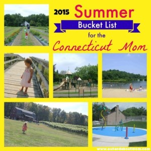 Summer Bucket List 2015 Cover