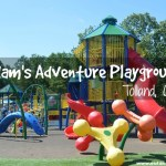 Adam's Adventure Playground
