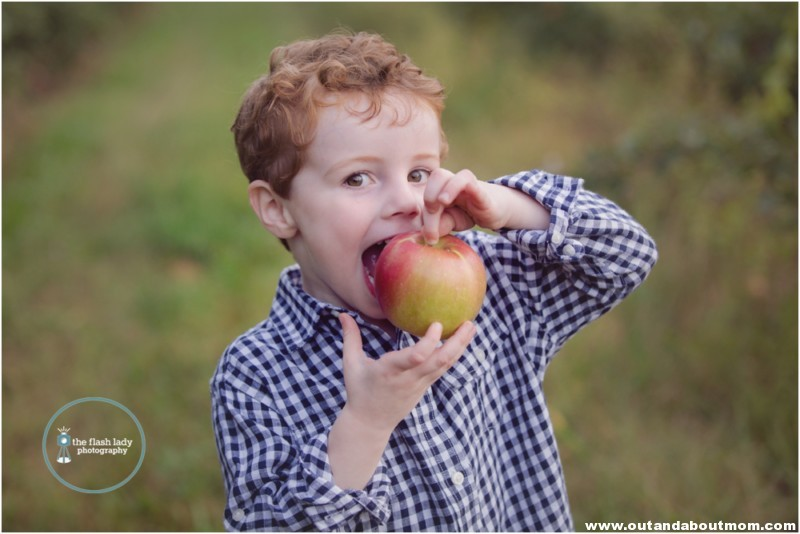 gale-family-fall-apple-picking-web_0023