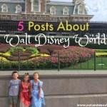 5 Posts About Walt Disney World