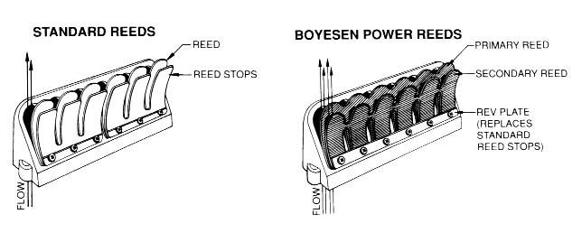 Boyesen Power Reeds