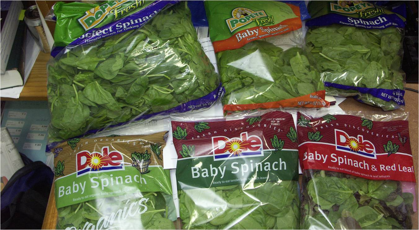Bagged Spinach - The International Outbreak Museum