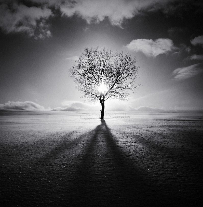 High Contrast Wallpaper For Iphone X Black And White Landscape Photos Landscapes With A Soul