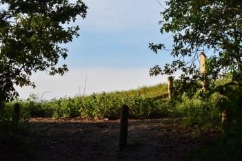 Het Gelderse platteland