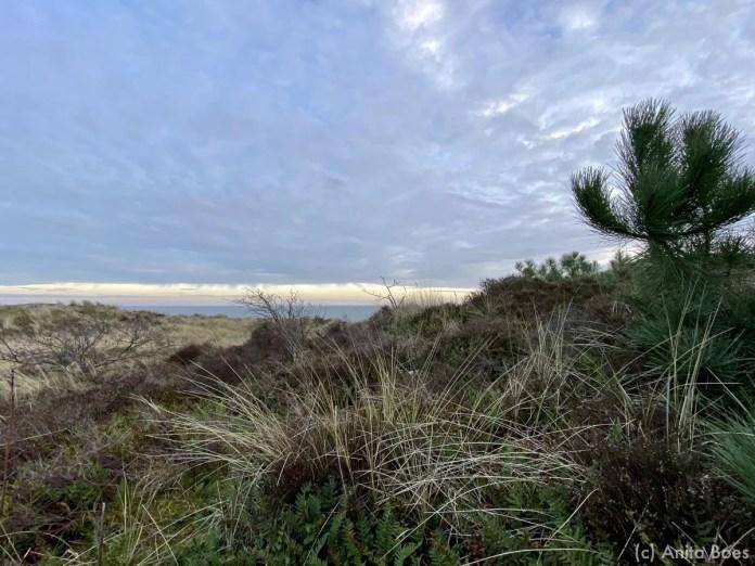 De Waddenzee vanaf de duinen bij Dellewal.