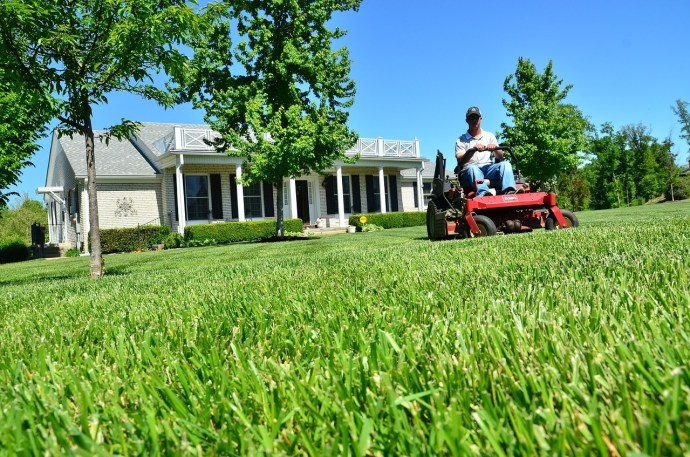 How to Cut Grass after Rain