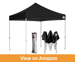 Eurmax 10 X 10 Easy Pop-up u2013 Best Beach Canopy For Wind  sc 1 st  Outdoor Geeky & Best Beach Canopy Reviews (Updated Jan. 2017) -Ultimate Buyeru0027s Guide