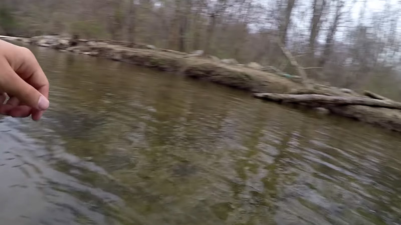 Best Time to Catch Trout