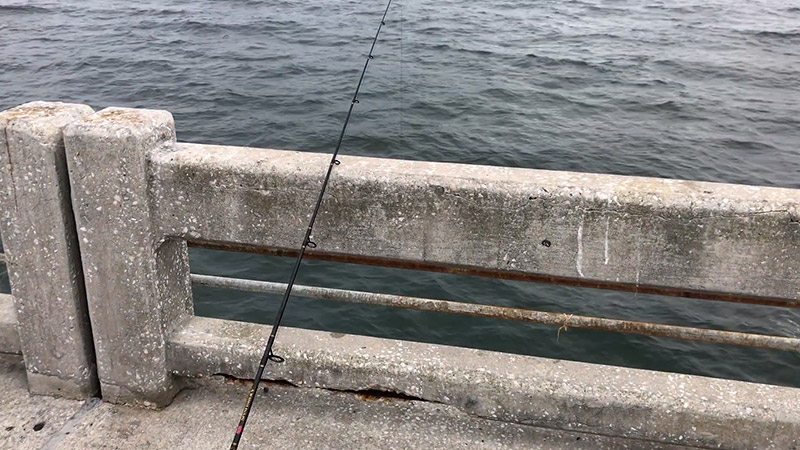 Skyway Bridge Fishing Tips For Beginners