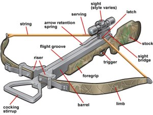Outdoorhobbies Limited Crossbow Info