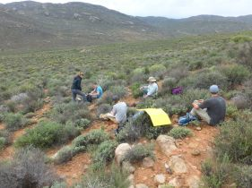 A rare moment of (most of) the group working together! Here we were recording vegetation information. Photo credit: Ulysse