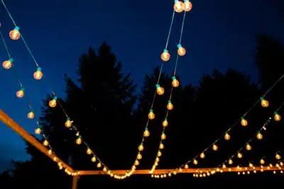 low voltage lighting bellevue