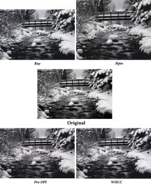 Larger versions of the scans of the Telluride Creek prints