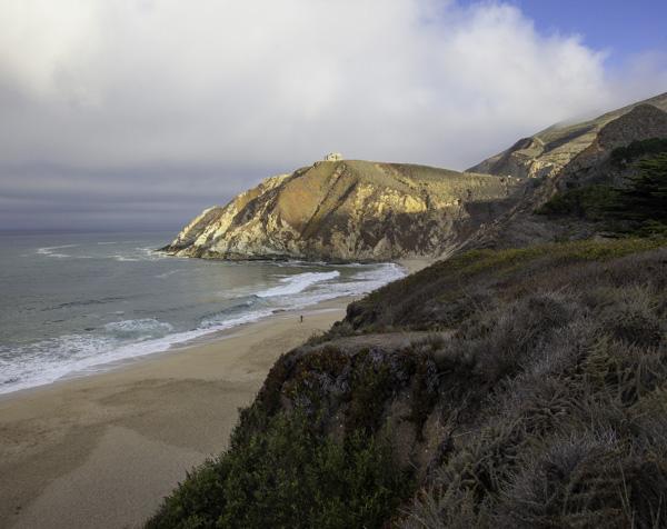 Grey Whale Cove